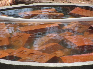 Image result for soaked brick in water
